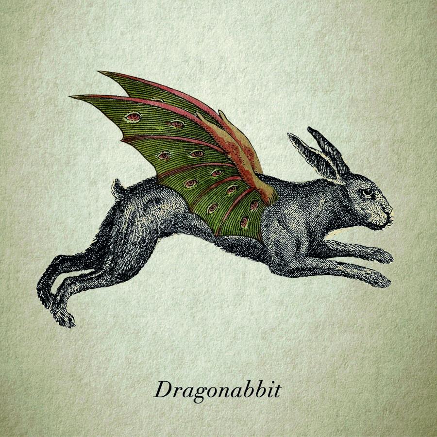 Dragonabbit